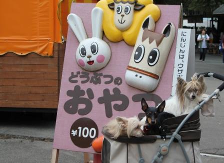朝霧高原 045.jpg