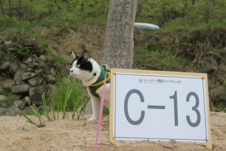 箕面キャンプフィールド 053.jpg